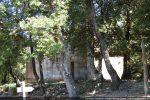 Chapelle dans les chênes