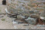 Base de l'abside :pierres irrégulières formant soubassement