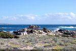 Rocher et vue du site de la chapelle