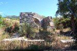 Vue des vestiges de l'ouest: successivement arase du mur ouest, mur de la maison d'habitation, abside