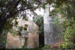 Ruines dans la végétation (chapelle et campanile)