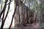 Mur sud: avant plan mur de la chapelle primitive (entre le 7e et le 10e siècle); plus loin: élargissement (vers le 16e-17e siècle)