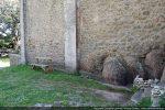 Mur englobant en partie les roches en place; contreforts construits de belles pierres (13e siècle)