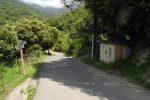 Chemin d'accès:  quitter la boucle de Casenove et remonter la route asphaltée quelques mètres avant de monter par le sentier à gauche