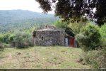 Abside et réserve à foin bâtie contre le mur nord. La chapelle remonterait au 9e siècle pour G. Moracchini-Mazel. Pour R. Coroneo, par contre, elle aurait été construite entre 1150 et 1250