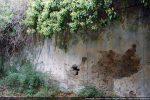 Mur nord recouvert de crépi