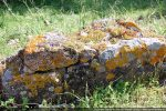 Elévation maximale du mur nord: les pierres de tailles moyennes sont liées au mortier de chaux