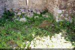 Reste du mur devant l'abside