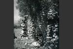 Oratoire: murs extérieurs (Cahier corsica, 168-169, 1995)