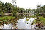Lac de Creno bordé d'arbres