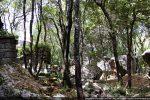 Les ruines de Santa Ursula se confondent dans la végétation très dense