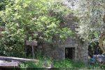 Maison dans la végétation