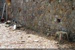 Base du mur : on retrouve sur tout le pourtour de l'édifice le même appareillage fait de pierres peu taillées témoignant d'une technique paléochrétienne