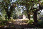 Vue de la chapelle Saint Pancrace du chemin d'accès