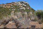 Les ruines de l'oratoire San Bernardino envahies par la végétation