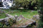 Partie occidentale; sous la végétation les banquettes romanes